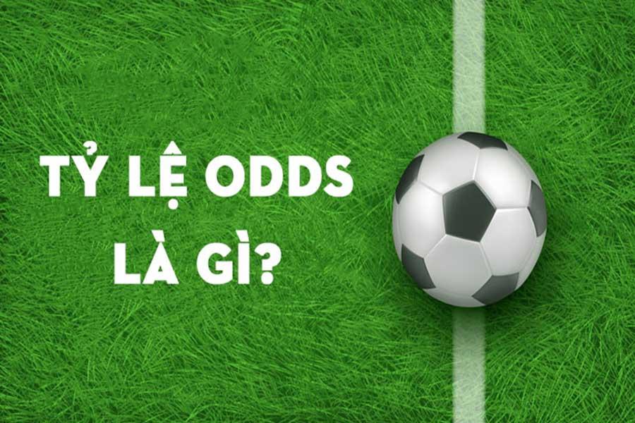 Khái niệm cơ bản về tỷ lệ Odds trong bóng đá