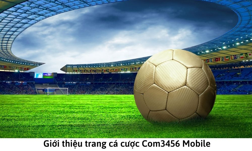 Giới thiệu trang cá cược Com3456 Mobile