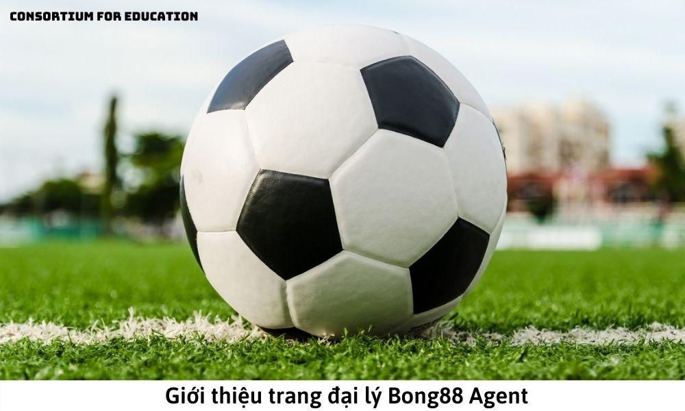 Giới thiệu trang đại lý Bong88 Agent